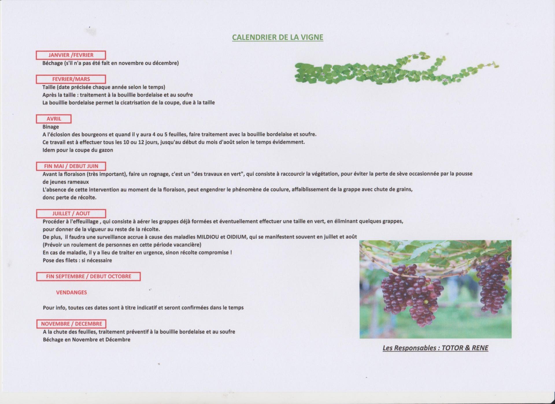Calendrier vigne 001